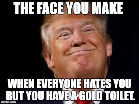 THE FACE YOU MAKE WHEN EVERYONE HATES YOU BUT YOU HAVE A GOLD TOILET. | image tagged in djt | made w/ Imgflip meme maker