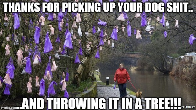 THANKS FOR PICKING UP YOUR DOG SHIT.. ...AND THROWING IT IN A TREE!!! | image tagged in dog shit | made w/ Imgflip meme maker
