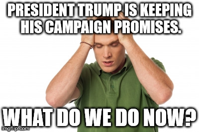 The reason why the Left is going crazy over Trump. They are used to being let down and lied to!  | PRESIDENT TRUMP IS KEEPING HIS CAMPAIGN PROMISES. WHAT DO WE DO NOW? | image tagged in donald trump approves,lmao,politics,truth | made w/ Imgflip meme maker
