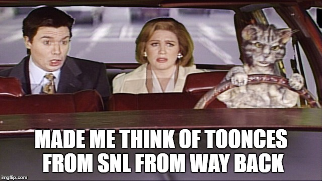 MADE ME THINK OF TOONCES FROM SNL FROM WAY BACK | made w/ Imgflip meme maker