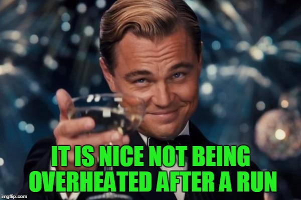 Leonardo Dicaprio Cheers Meme | IT IS NICE NOT BEING OVERHEATED AFTER A RUN | image tagged in memes,leonardo dicaprio cheers | made w/ Imgflip meme maker