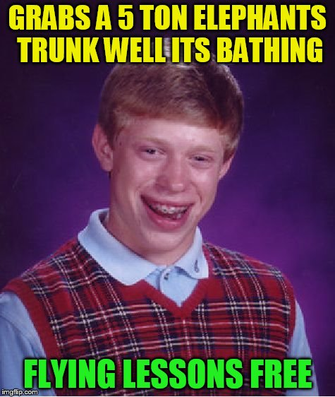 Bad Luck Brian Meme | GRABS A 5 TON ELEPHANTS TRUNK WELL ITS BATHING FLYING LESSONS FREE | image tagged in memes,bad luck brian | made w/ Imgflip meme maker