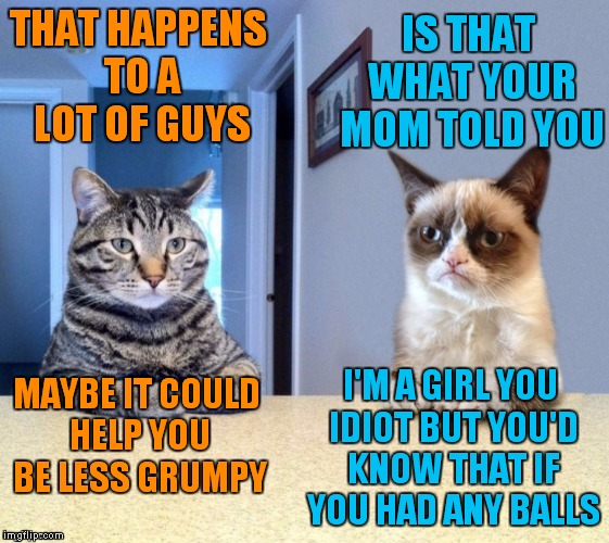 Take a seat cat and grumpy cat review | THAT HAPPENS TO A LOT OF GUYS I'M A GIRL YOU IDIOT BUT YOU'D KNOW THAT IF YOU HAD ANY BALLS IS THAT WHAT YOUR MOM TOLD YOU MAYBE IT COULD HE | image tagged in take a seat cat and grumpy cat review | made w/ Imgflip meme maker