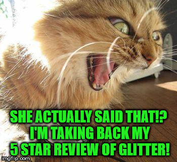 SHE ACTUALLY SAID THAT!? I'M TAKING BACK MY 5 STAR REVIEW OF GLITTER! | made w/ Imgflip meme maker