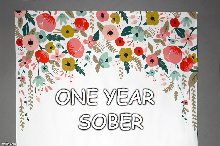 ONE YEAR SOBER | image tagged in clean and sober | made w/ Imgflip meme maker