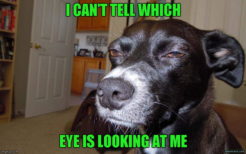 I CAN'T TELL WHICH EYE IS LOOKING AT ME | made w/ Imgflip meme maker