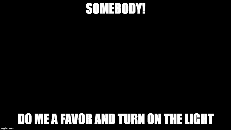A lightswitch |  SOMEBODY! DO ME A FAVOR AND TURN ON THE LIGHT | image tagged in memes,lightswitch | made w/ Imgflip meme maker