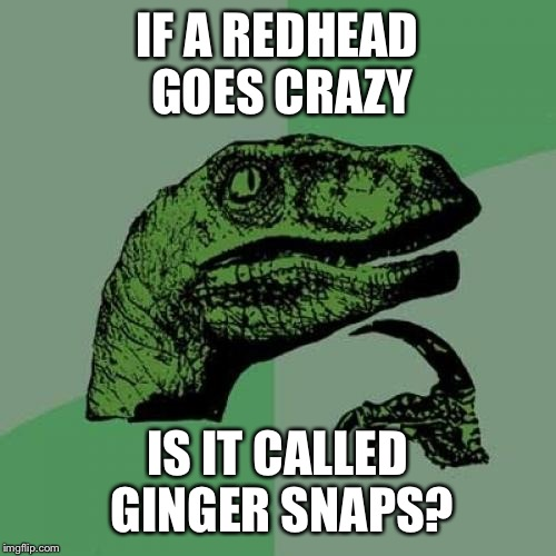 Philosoraptor Meme | IF A REDHEAD GOES CRAZY IS IT CALLED GINGER SNAPS? | image tagged in memes,philosoraptor | made w/ Imgflip meme maker