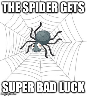 THE SPIDER GETS SUPER BAD LUCK | image tagged in cartoon spider | made w/ Imgflip meme maker