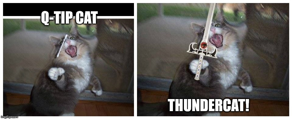 Q-TIP CAT | Q-TIP CAT THUNDERCAT! | image tagged in q-tip cat,thundercats | made w/ Imgflip meme maker
