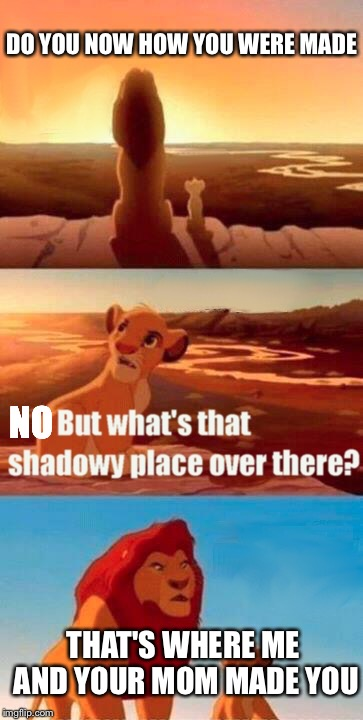 Simba Shadowy Place Meme | DO YOU NOW HOW YOU WERE MADE THAT'S WHERE ME AND YOUR MOM MADE YOU NO | image tagged in memes,simba shadowy place | made w/ Imgflip meme maker
