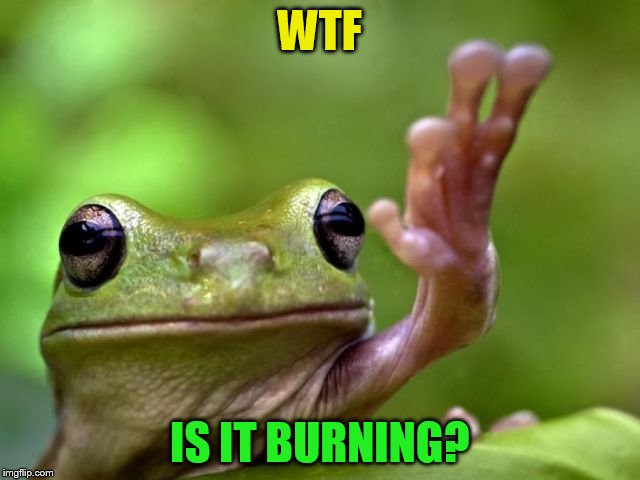 WTF IS IT BURNING? | made w/ Imgflip meme maker