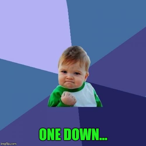 Success Kid Meme | ONE DOWN... | image tagged in memes,success kid | made w/ Imgflip meme maker