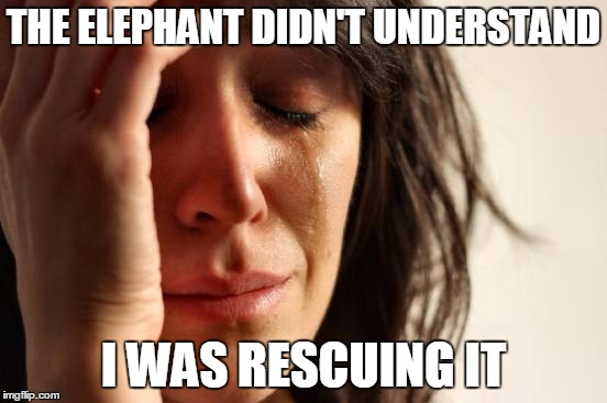 First World Problems Meme | THE ELEPHANT DIDN'T UNDERSTAND I WAS RESCUING IT | image tagged in memes,first world problems | made w/ Imgflip meme maker