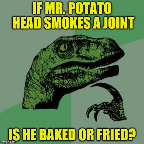 Philosoraptor Meme | IF MR. POTATO HEAD SMOKES A JOINT IS HE BAKED OR FRIED? | image tagged in memes,philosoraptor | made w/ Imgflip meme maker