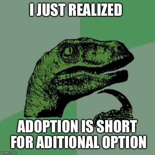 No I don't don't find this on the internet anywhere It just came to me and blew my mind | I JUST REALIZED ADOPTION IS SHORT FOR ADITIONAL OPTION | image tagged in memes,philosoraptor,mind blown | made w/ Imgflip meme maker