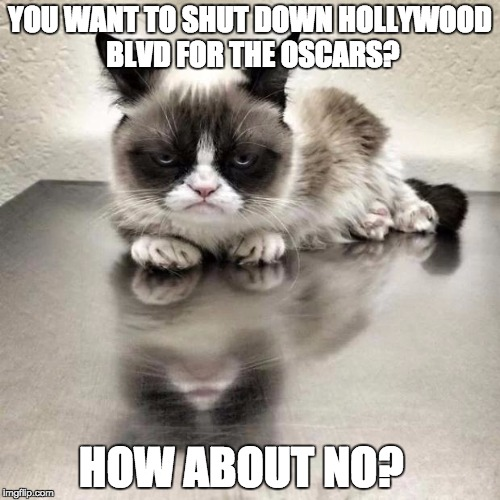 Grumpy cat office | YOU WANT TO SHUT DOWN HOLLYWOOD BLVD FOR THE OSCARS? HOW ABOUT NO? | image tagged in grumpy cat office | made w/ Imgflip meme maker