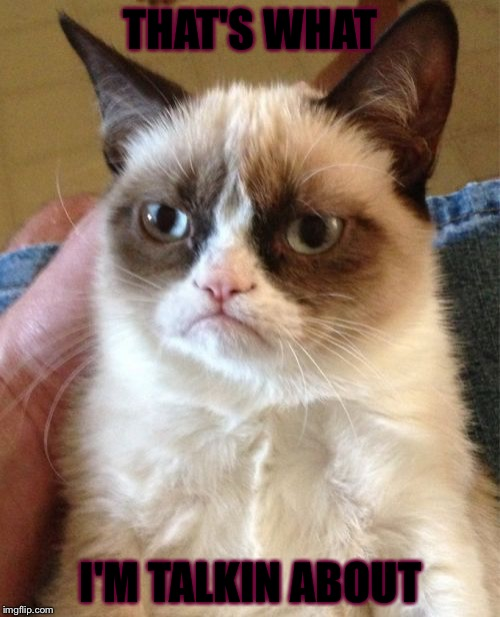 Grumpy Cat Meme | THAT'S WHAT I'M TALKIN ABOUT | image tagged in memes,grumpy cat | made w/ Imgflip meme maker