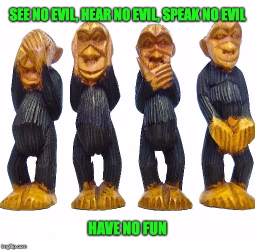 No-Evil Monkeys | SEE NO EVIL, HEAR NO EVIL, SPEAK NO EVIL HAVE NO FUN | image tagged in no fun | made w/ Imgflip meme maker