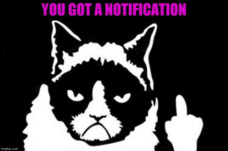 YOU GOT A NOTIFICATION | made w/ Imgflip meme maker