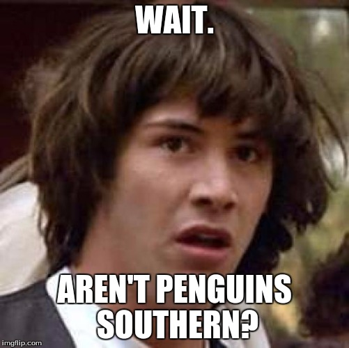 Conspiracy Keanu Meme | WAIT. AREN'T PENGUINS SOUTHERN? | image tagged in memes,conspiracy keanu | made w/ Imgflip meme maker