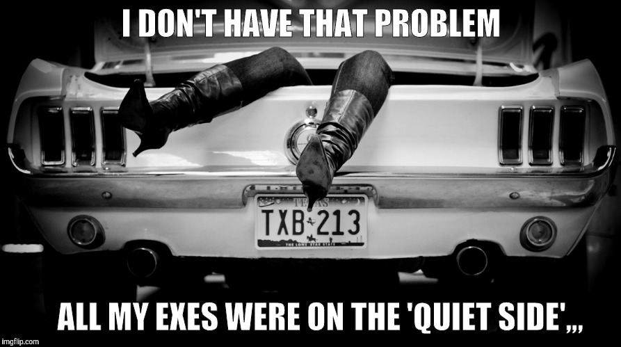 The Hooker in the Trunk of My Car | I DON'T HAVE THAT PROBLEM ALL MY EXES WERE ON THE 'QUIET SIDE',,, | image tagged in the hooker in the trunk of my car | made w/ Imgflip meme maker