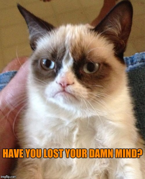 Grumpy Cat Meme | HAVE YOU LOST YOUR DAMN MIND? | image tagged in memes,grumpy cat | made w/ Imgflip meme maker