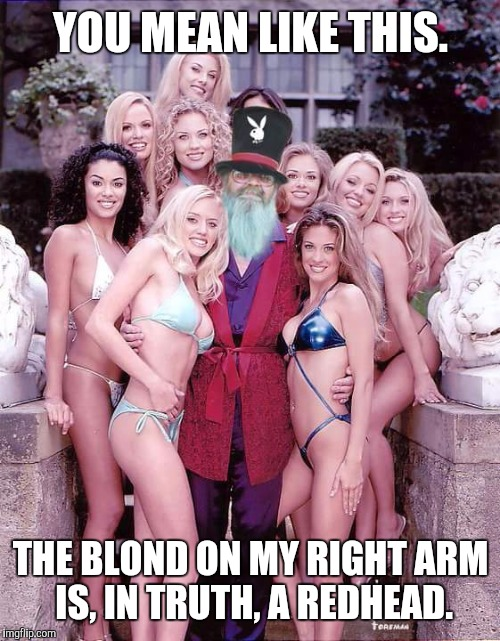 YOU MEAN LIKE THIS. THE BLOND ON MY RIGHT ARM IS, IN TRUTH, A REDHEAD. | made w/ Imgflip meme maker