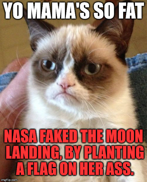 Grumpy Cat Meme | YO MAMA'S SO FAT NASA FAKED THE MOON LANDING, BY PLANTING A FLAG ON HER ASS. | image tagged in memes,grumpy cat,funny,grumpy,yo mamas so fat,yo mama so fat | made w/ Imgflip meme maker