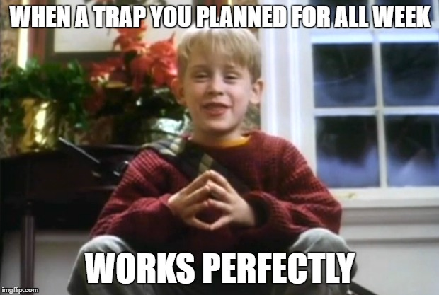 WHEN A TRAP YOU PLANNED FOR ALL WEEK WORKS PERFECTLY | made w/ Imgflip meme maker