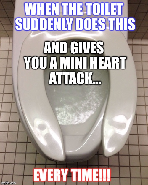 WHEN THE TOILET SUDDENLY DOES THIS EVERY TIME!!! AND GIVES YOU A MINI HEART ATTACK... | image tagged in crappy toilets | made w/ Imgflip meme maker