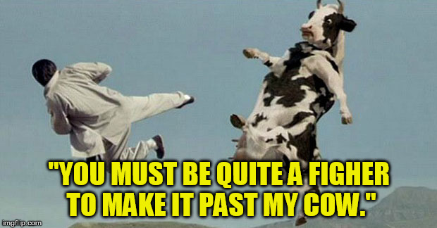 """YOU MUST BE QUITE A FIGHER TO MAKE IT PAST MY COW."" 