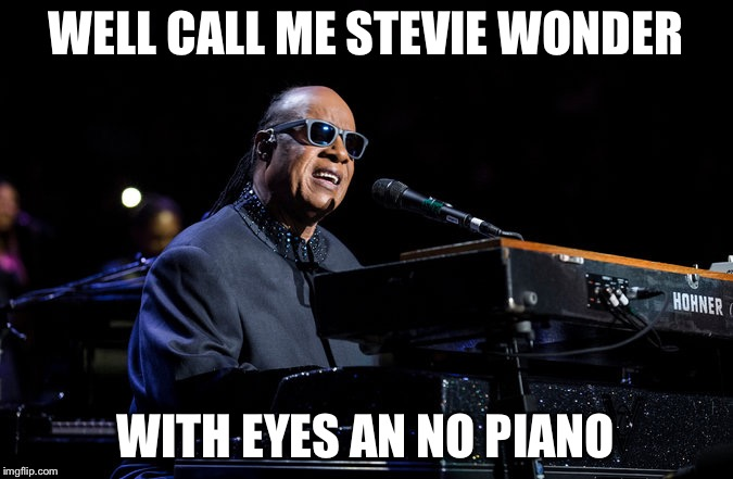 WELL CALL ME STEVIE WONDER WITH EYES AN NO PIANO | image tagged in stevie wonder | made w/ Imgflip meme maker