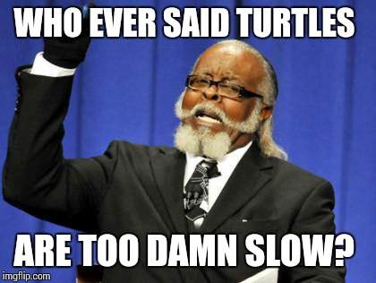 Too Damn High Meme | WHO EVER SAID TURTLES ARE TOO DAMN SLOW? | image tagged in memes,too damn high | made w/ Imgflip meme maker