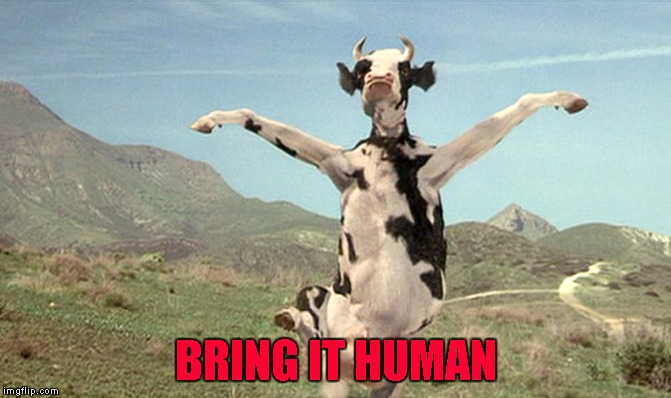 BRING IT HUMAN | made w/ Imgflip meme maker