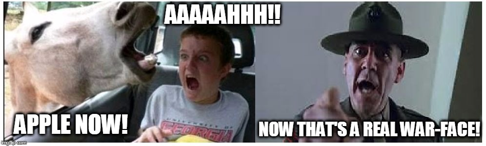 War Face | APPLE NOW! AAAAAHHH!! NOW THAT'S A REAL WAR-FACE! | image tagged in war face,horse head,kid screaming,screaming kid,full metal jacket,surprised | made w/ Imgflip meme maker