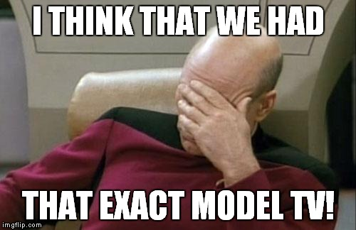 Captain Picard Facepalm Meme | I THINK THAT WE HAD THAT EXACT MODEL TV! | image tagged in memes,captain picard facepalm | made w/ Imgflip meme maker