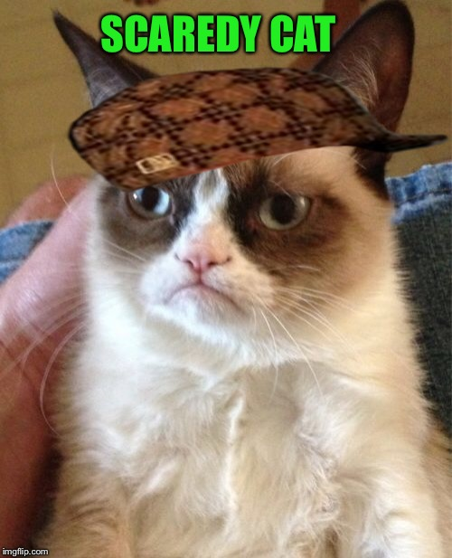 Grumpy Cat Meme | SCAREDY CAT | image tagged in memes,grumpy cat,scumbag | made w/ Imgflip meme maker