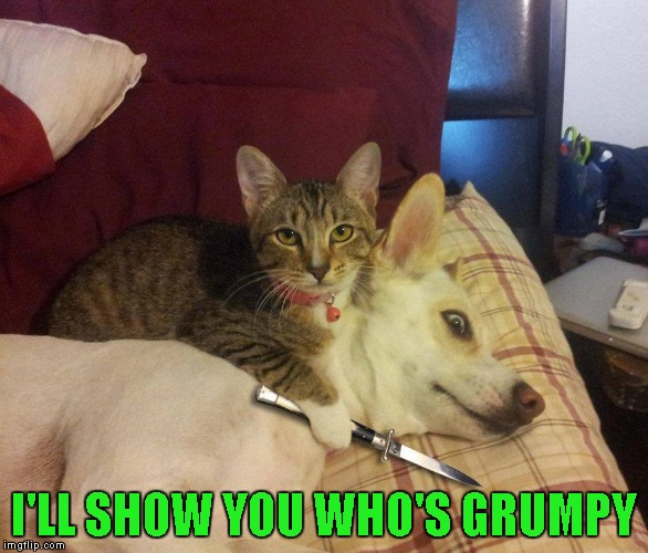 I'LL SHOW YOU WHO'S GRUMPY | made w/ Imgflip meme maker