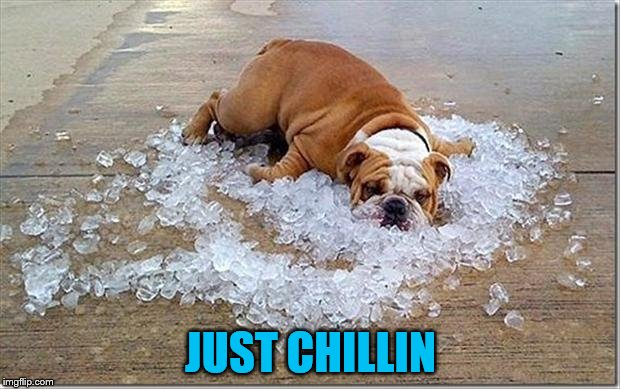 JUST CHILLIN | made w/ Imgflip meme maker