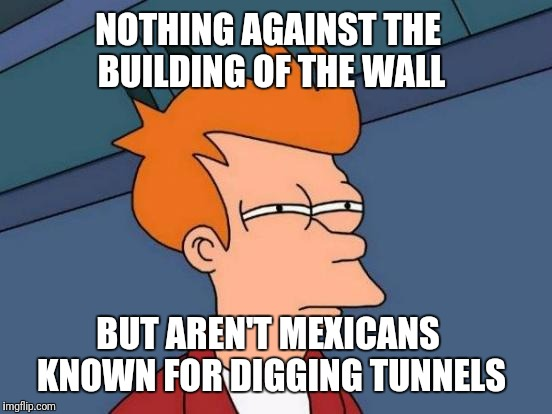 Like the one in San Diego  | NOTHING AGAINST THE BUILDING OF THE WALL BUT AREN'T MEXICANS KNOWN FOR DIGGING TUNNELS | image tagged in memes,futurama fry,wall,light at the end of tunnel,succesful mexican | made w/ Imgflip meme maker