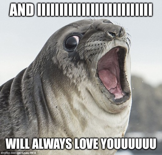 Joke Seal | AND IIIIIIIIIIIIIIIIIIIIIIIIII WILL ALWAYS LOVE YOUUUUUU | image tagged in joke seal | made w/ Imgflip meme maker