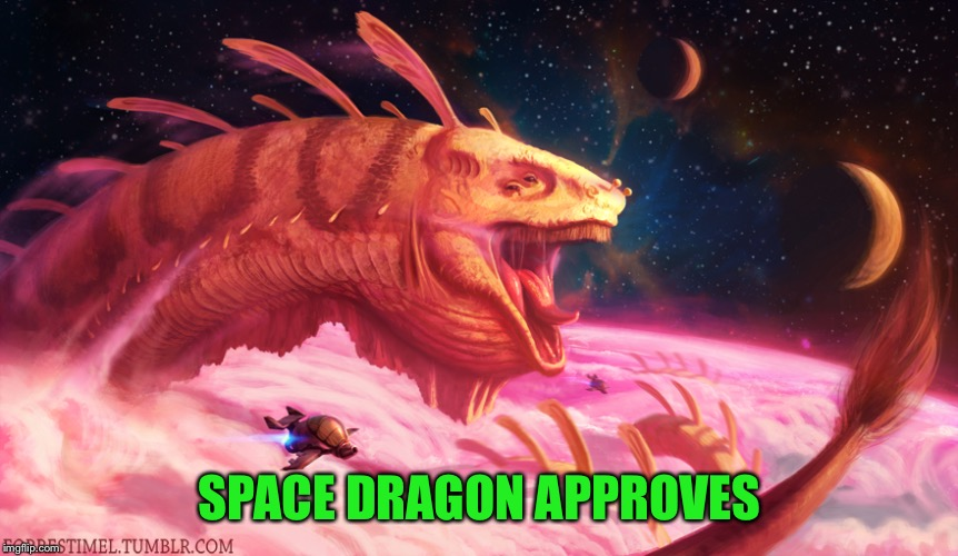 SPACE DRAGON APPROVES | made w/ Imgflip meme maker