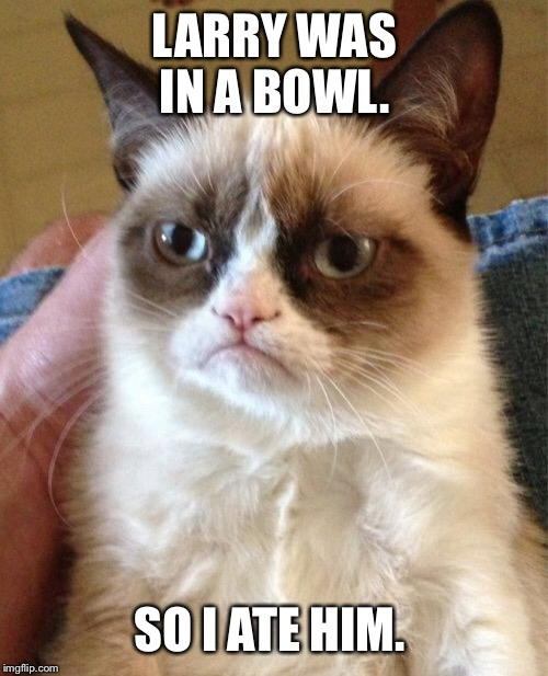 Grumpy Cat Meme | LARRY WAS IN A BOWL. SO I ATE HIM. | image tagged in memes,grumpy cat | made w/ Imgflip meme maker
