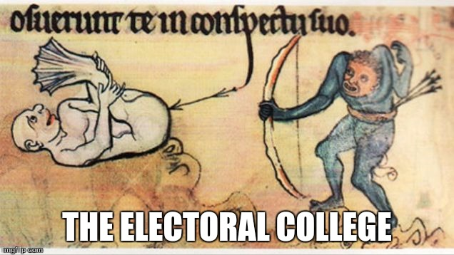 Your Government at Work |  THE ELECTORAL COLLEGE | image tagged in american politics,medieval memes,arrow | made w/ Imgflip meme maker