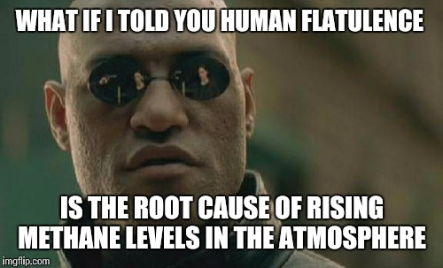Matrix Morpheus Meme | WHAT IF I TOLD YOU HUMAN FLATULENCE IS THE ROOT CAUSE OF RISING METHANE LEVELS IN THE ATMOSPHERE | image tagged in memes,matrix morpheus | made w/ Imgflip meme maker