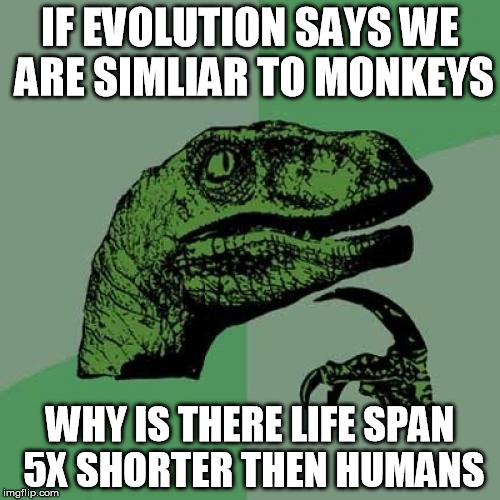 Philosoraptor | IF EVOLUTION SAYS WE ARE SIMLIAR TO MONKEYS WHY IS THERE LIFE SPAN 5X SHORTER THEN HUMANS | image tagged in memes,philosoraptor | made w/ Imgflip meme maker