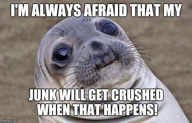 Awkward Moment Sealion Meme | I'M ALWAYS AFRAID THAT MY JUNK WILL GET CRUSHED WHEN THAT HAPPENS! | image tagged in memes,awkward moment sealion | made w/ Imgflip meme maker