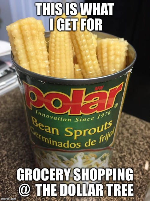THIS IS WHAT I GET FOR GROCERY SHOPPING @  THE DOLLAR TREE | image tagged in you had one job | made w/ Imgflip meme maker