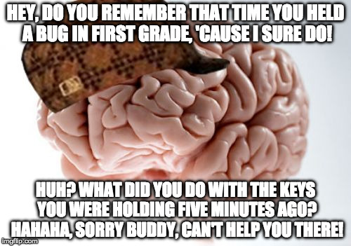 I can easily recall several memories from when I was in elementary school, but I can't remember anything I did yesterday. | HEY, DO YOU REMEMBER THAT TIME YOU HELD A BUG IN FIRST GRADE, 'CAUSE I SURE DO! HUH? WHAT DID YOU DO WITH THE KEYS YOU WERE HOLDING FIVE MIN | image tagged in memes,scumbag brain,memory | made w/ Imgflip meme maker